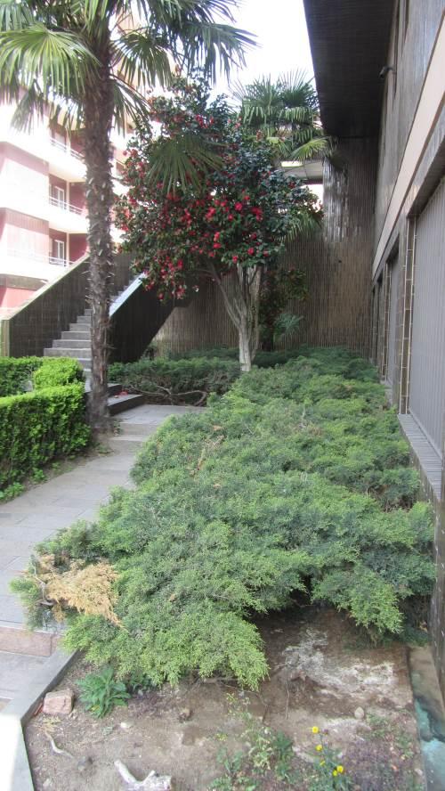 Hotel lugano photogallery for Stanze affitto lugano